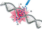 Ions that love DNA to bits